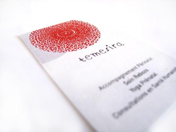 temesira-logo-cartes-de-visite