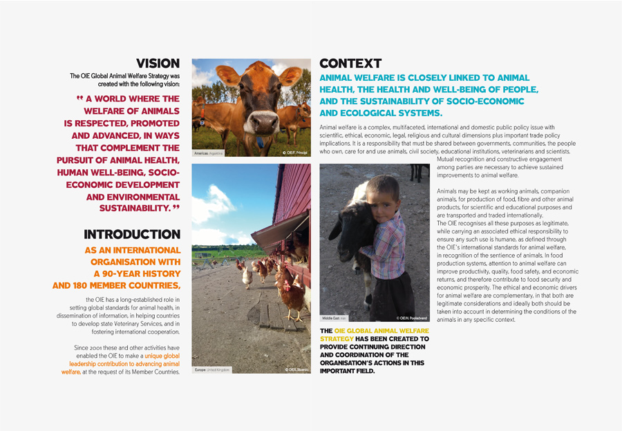 public policy for animal welfare in Abstract animal-welfare issues are usually portrayed in the media in a black-and-white fashion, with simple, single-perspective solutions proposed for what are often, in fact, complex policy issues.